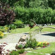 Nužievinta obelis tapo dekoratyviniu akcentu. Atremta į grindinį, ji nekliudo vejos šienavimui.