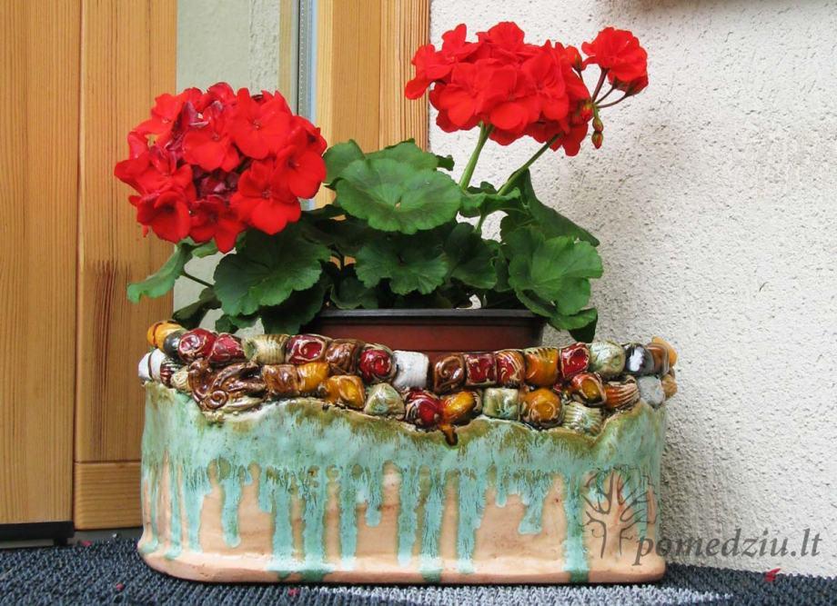 Kiemo dekoras: keramikinis vazonas