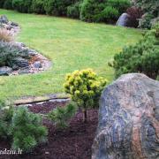 Prie tokio didelio ir įdomaus akmens ypatingų augalų nereikia. Jis savaime puošia aplinką, o augalai, šiuo atveju, sudaro jam foną.