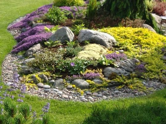Augalų ir akmenų kompozicija alinariume pomedžiu.lt kieme